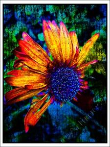 Grunge Flower